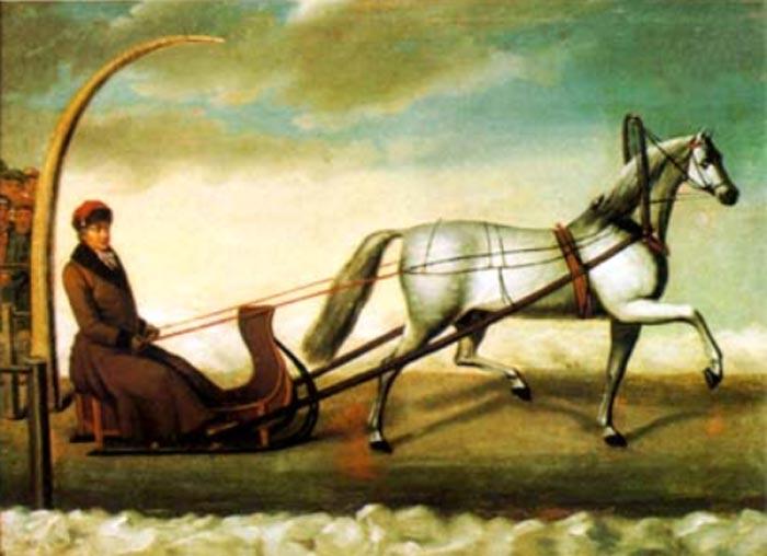 Il cavallo da trotto Orlov Trotter; Horse Breeding Nikolai Sverchkov (1817-1898)