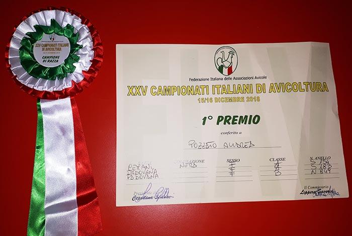 Premi Campionati Italiani Avicoltura vinti da Andrea Pozzato