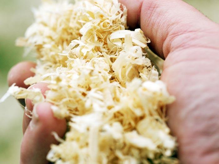Il truciolo di legno depolverato è un materiale da lettiera eccellente e ha un elevato potere assorbente.