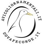 AvicoliOrnamentali.it logo azienda, allevamento galline