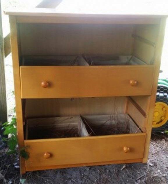 Nidi per galline ovaiole realizzati all'interno di una vecchia cassettiera