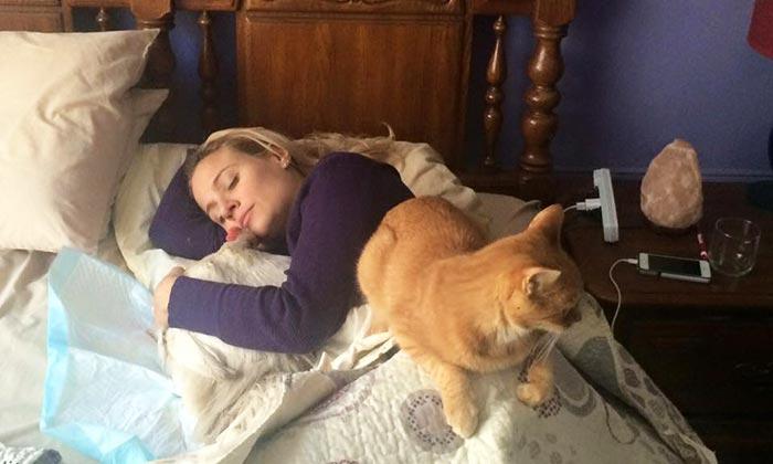 Pisolino pomeridiano con Penelope e gatto rosso