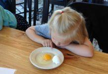 Uovo: anatomia e composizione chimica di guscio, albume e tuorlo | Tuttosullegalline.it