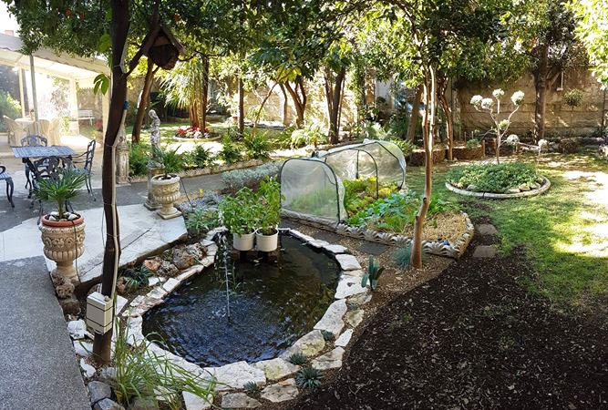 giardino con laghetto per acquaponica