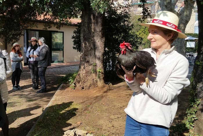 Il nome Argia (per la gallina razza Livorno colorazione nera, in mano alla Dott.ssa Margherita Marzoni Fecia di Cossato).