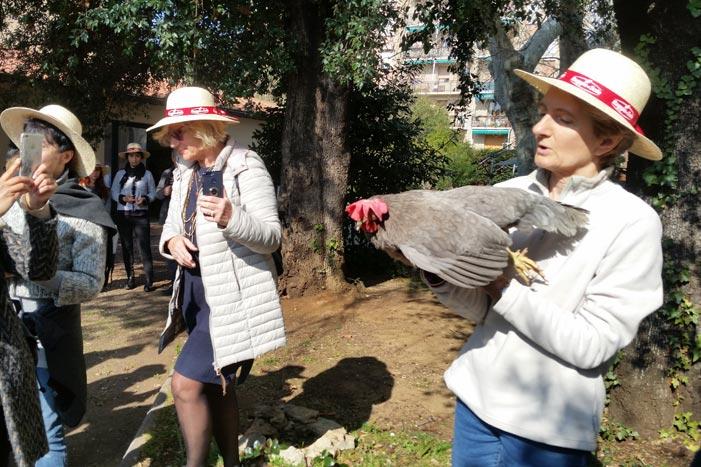 Il nome Argia (per la gallina razza Livorno colorazione blu, in mano alla Dott.ssa Margherita Marzoni Fecia di Cossato).