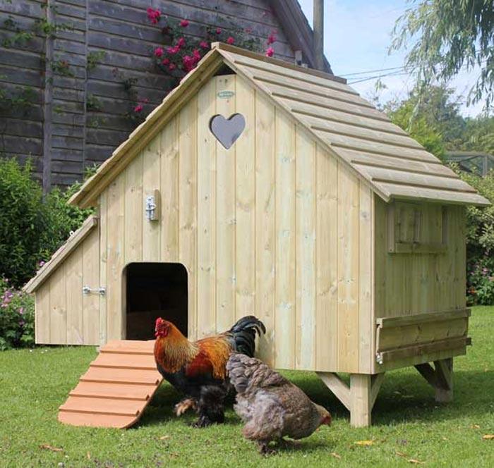 Un bellissimo esempio di pollaio urbano collocato in un giardino