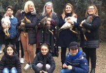 Galline Libere: a Guspini (Sardegna) ecco le cocche che migliorano la vita e l'ambiente | Tuttosullegalline.it