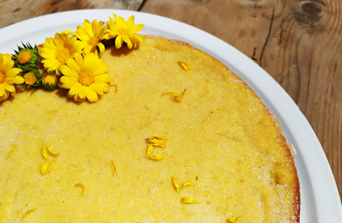 Pudding di ricotta, cannella e limone grattugiato e scorza di arancia in polvere