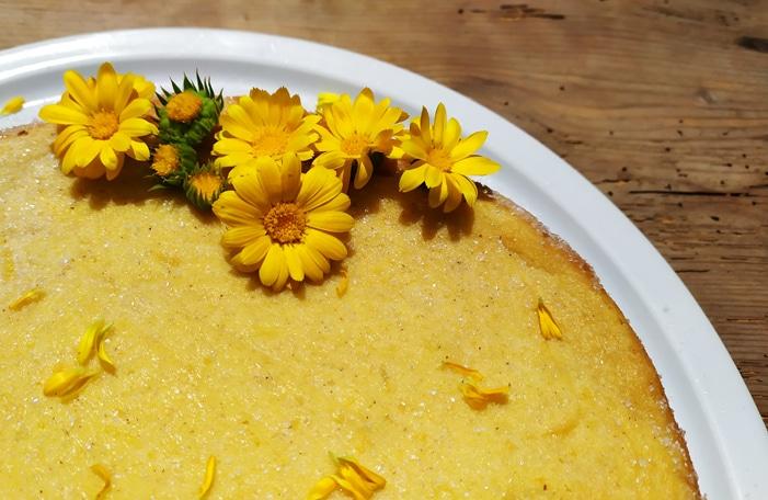 Pudding decorato con fiori e petali di calendula
