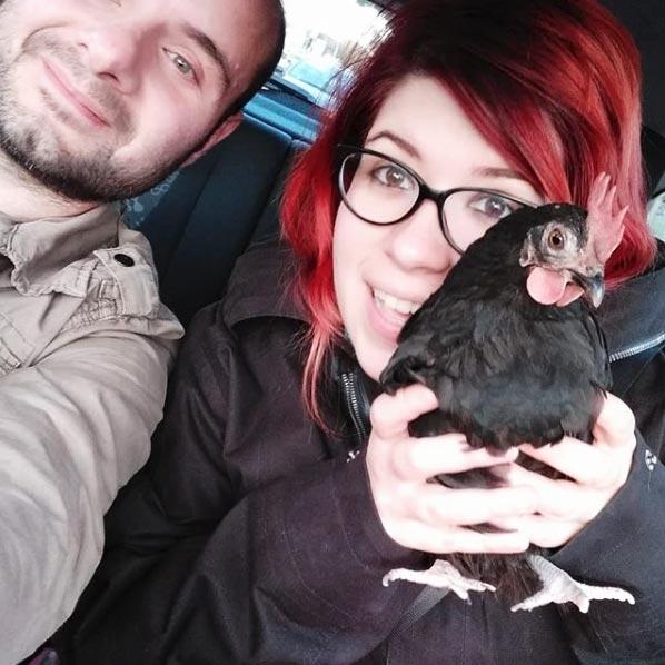 Galli, gallina malvagia da compagnia con Valentina e Salvo