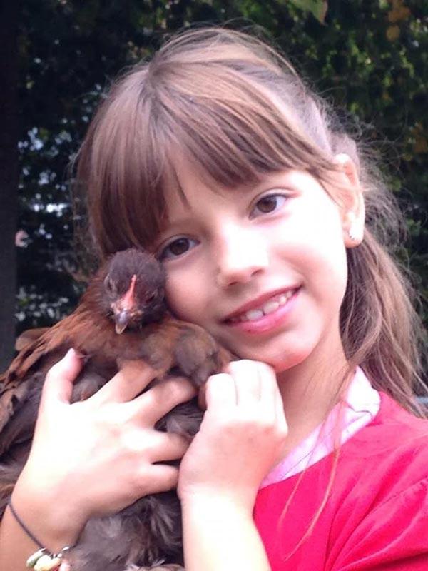 Le galline secondo Lorena Gabellone
