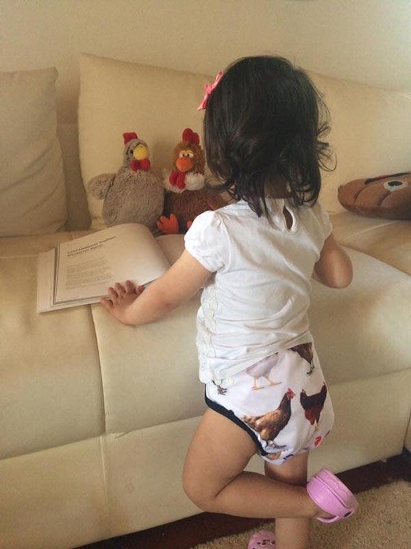 Le galline secondo Romina Sedda