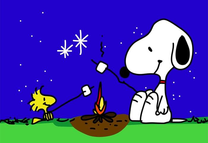 """Snoopy e Woodstock e i loro """"toasted marshmallow"""" attorno al fuoco, sotto ad un cielo stellato"""