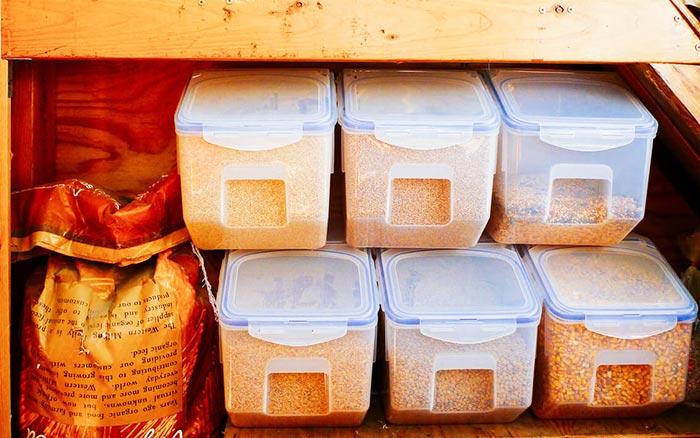 Contenitori anti-roditori per cereali destinati agli avicoli