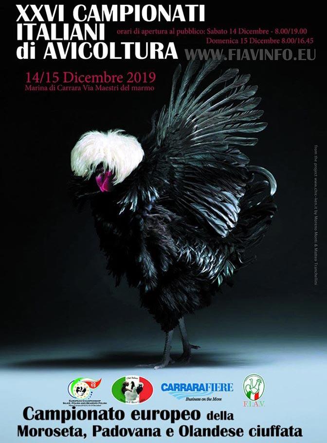 Locandina 26° campionati italiani avicoltura FIAV, Carrara, 2019