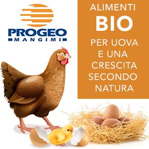Progeo - Mangime BIO per le galline del tuo pollaio