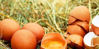 Spray nasale anti-covid dal tuorlo delle uova di gallina