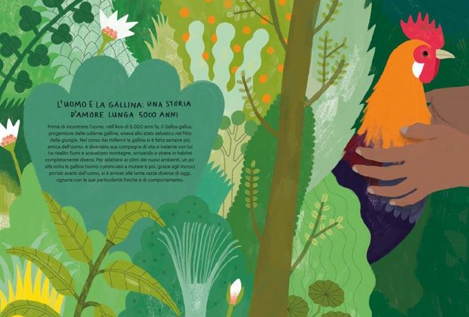 Il Gallinario, libro illustrato a colori