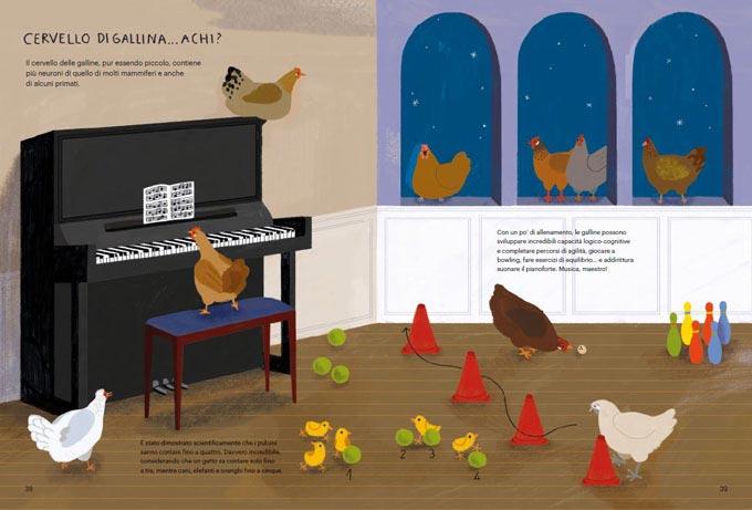 Il Gallinario, capitolo secondo: come è fatta una gallina